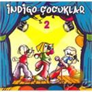 Indigo Cocuklar 2 (indigo Cocuklar)