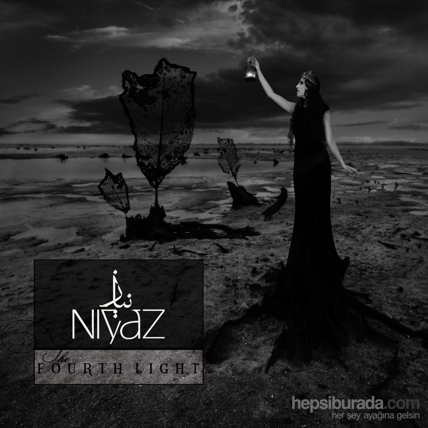 Niyaz - The Fourth Light