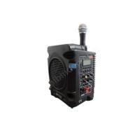 Denox Dn-P1130 Taşınabilir Ses Sistemi