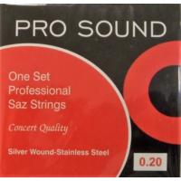 Pro Sound Saz Teli 0.20