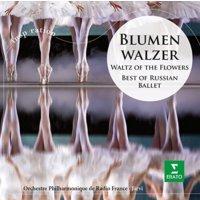 Paavo Jarvı - Blumenwalzer:Best Of Russı