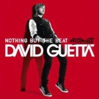 Davıd Guetta - Nothıng But The Beat Ultım