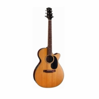 Peerless Pga50Ce Akustik Gitar