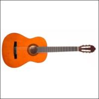Valencia Cg10 Klasik Gitar