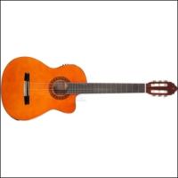 Valencia Cg160Cena Klasik Gitar