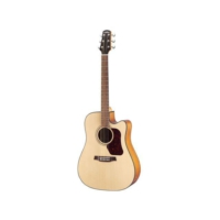 Walden Cd550Ce Akustik Gitar