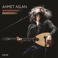 Ahmet Aslan - Na Mükemmel