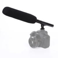 D Sound Ds-320E Kamera Koro Tiyatro