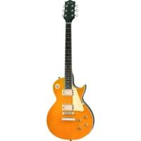 Jay Turser JT-220-GT Elektro Gitar