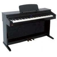 Ringway TG8875-BP - Lake Siyah Dijital Piyano