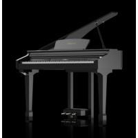 Ringway GDP1000L-BP Lake Siyah Kuyruklu Dijital Piyano