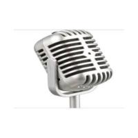 Wildlebend Vintage Karaoke Nostaljik Mikrofon
