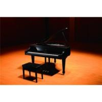 Roland GP-7-PE Parlak Siyah Dijital Grand Piyano