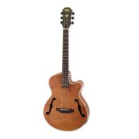 Aria FETF1N Jazz Style Elektro Akustik Gitar