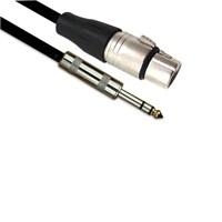 Ashton Cjp20 Hp 20Ft Mikrofon Kablosu 6Mt