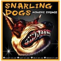 Akustik Gitar Teli Sdp11 Snarlıng Dogs