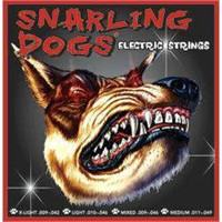 Elektro Gitar Teli Snarling Dogs Sdn09