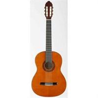 Valencia Cg10 Klasik Gitar Naturel