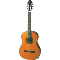 Washburn C-155 Klasik Gitar Profesyonel