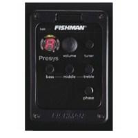 Fishman Psy101 + Man N40 Akustik Preampli Manyetik
