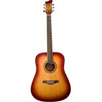 Jay Turser JTA-450S-ACS Akustik Gitar