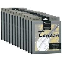 Tenson 600455 Fosfor Bronz Mandolin Teli Set