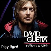 David Guetta feat.Neyo and Akon - Play Hard (remixes)