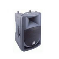 P Audio X-12 HP Kabin Hoparlör