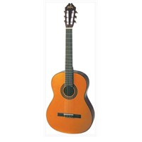 Washburn C-155 Klasik Gitar