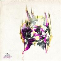 Acorn - No Ghost