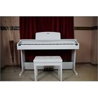 Werner Wd90 Wh Dijital Piyano Beyaz