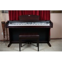Werner Wd100 Dr Dijital Piyano