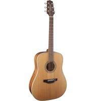 Takamine Gd20-Ns Akustik Gitar