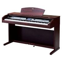 Werner WD100 DR Dijital Piyano (Tabure Hediyeli)