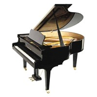 Alman El Yapımı Kuyruklu Piyano