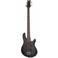 Schecter Raiden Special 4 Stblk Bas Gitar