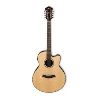 IBANEZ AEL108TD-NT Elektro Gitar