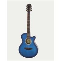 Arıa Cutaway Akustik Gitar