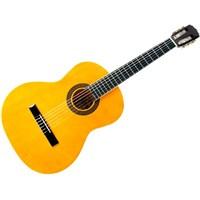 Arıa Fst200n Klasik Gitar