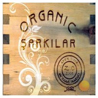 Zafer Cınbıl - Organıc Şarkılar