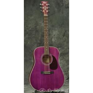 cort earth70tp akustik gitar