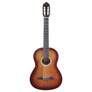 valencia vc204csb klasik gitar kılıf hediyeli
