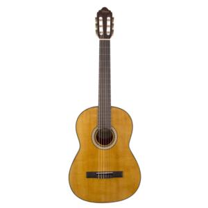 valencia vc404 klasik gitar kılıf hediyeli