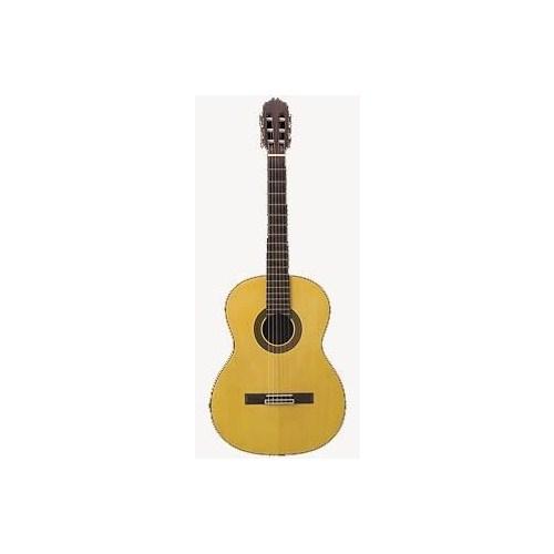 Takamine G Serisi G124 Klasik Gitar