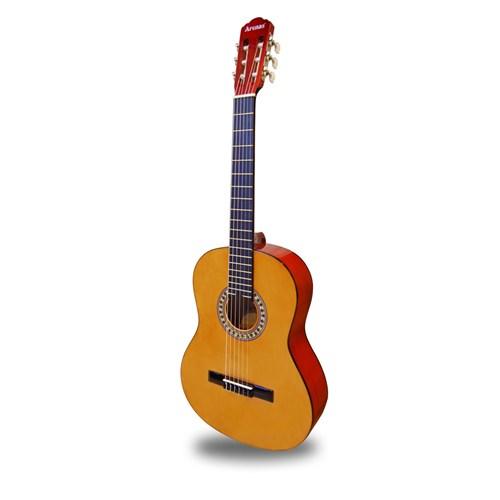 Arenas AC480 Y Klasik Gitar (Gitar Kılıfı Hediyeli)