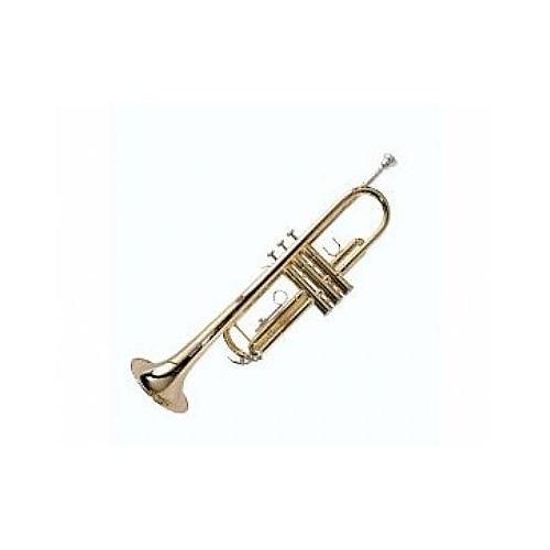 Ashton Tr10 Trompet