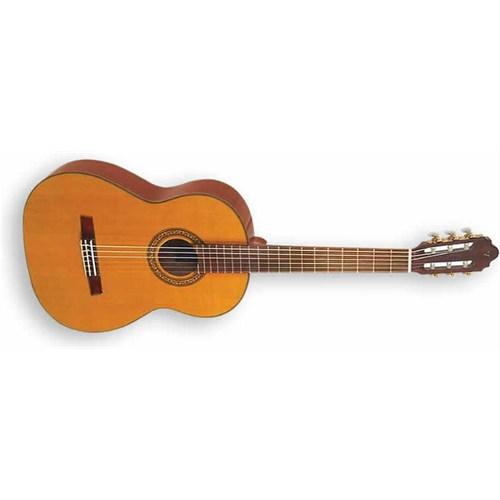 Valencia Cg190 Klasik Gitar+Kılıf