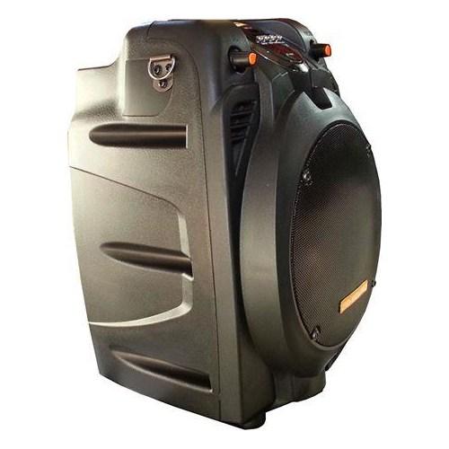 D-Sound 37316 Pa-065 Şarjlı Kabinler