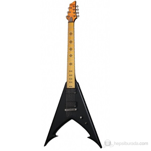 Schecter Jeff Loomis JLV 7 NT Elektro Gitar