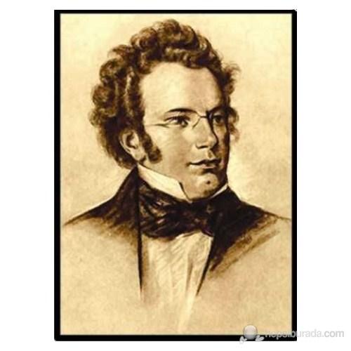 Fzsonata Schubert Posteri